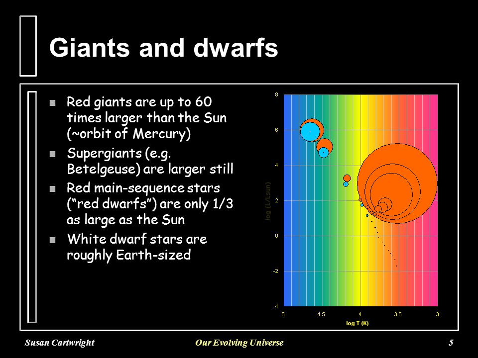 Susan CartwrightOur Evolving Universe5 Giants and dwarfs n Red giants are up to 60 times larger than the Sun (~orbit of Mercury) n Supergiants (e.g.