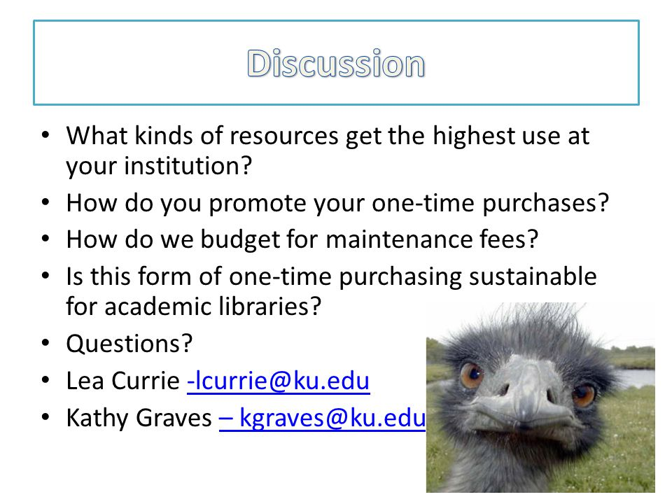 What kinds of resources get the highest use at your institution.
