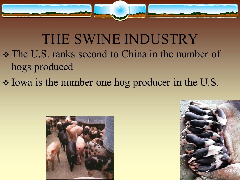 THE SWINE INDUSTRY  The U.S.