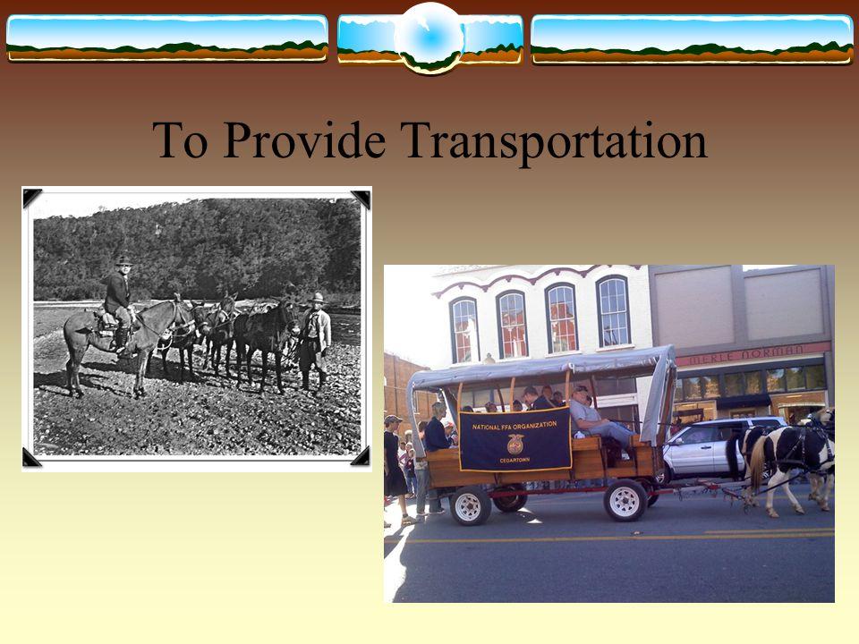 To Provide Transportation