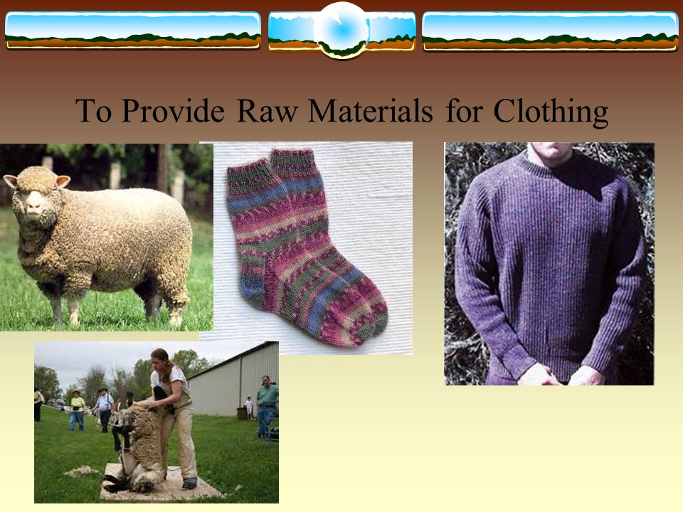 To Provide Raw Materials for Clothing