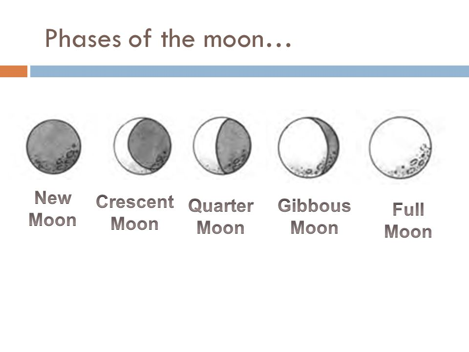 Phases of the moon…
