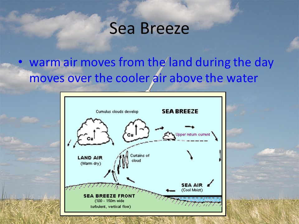 Sea Breeze warm air moves from the land during the day moves over the cooler air above the water