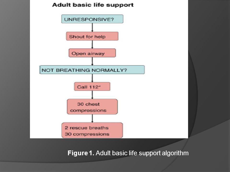 Figure 1. Adult basic life support algorithm