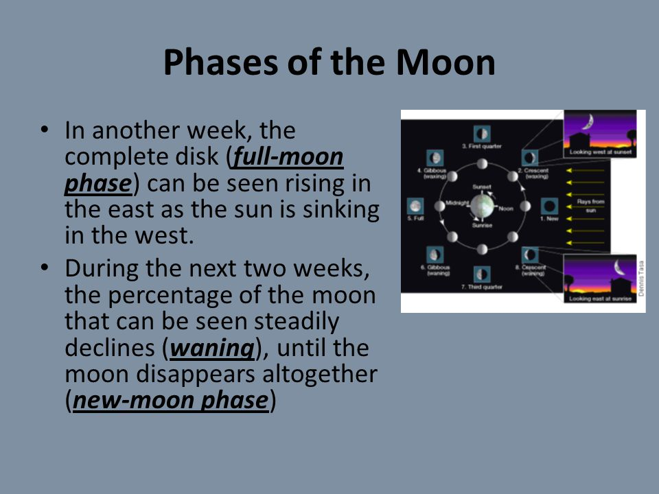 Phases of the Moon In another week, the complete disk (full-moon phase) can be seen rising in the east as the sun is sinking in the west.