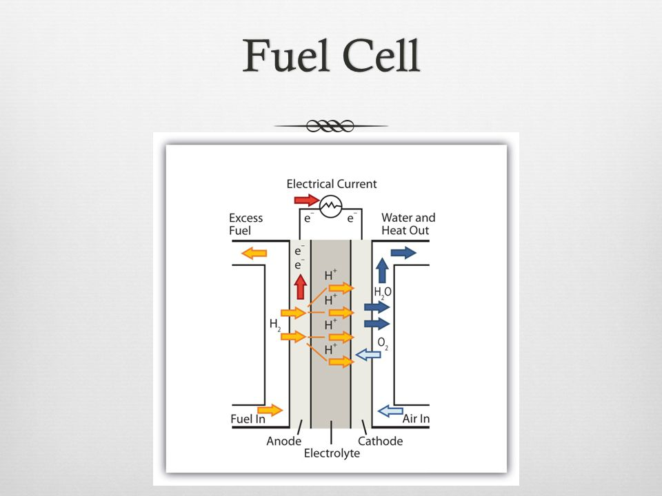 Fuel CellFuel Cell