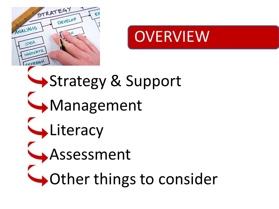 OVERVIEW Strategy & Support Management Literacy Assessment Other things to consider