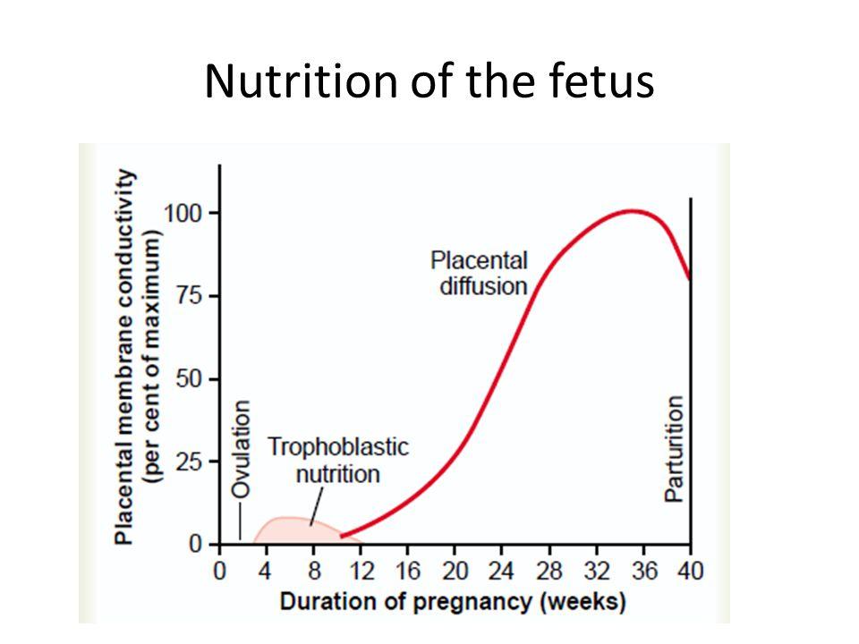 Hormonal Maintenance of the Uterine Endometrium