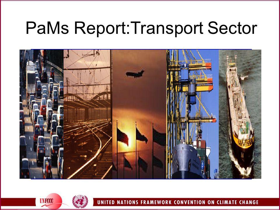 PaMs Report:Transport Sector