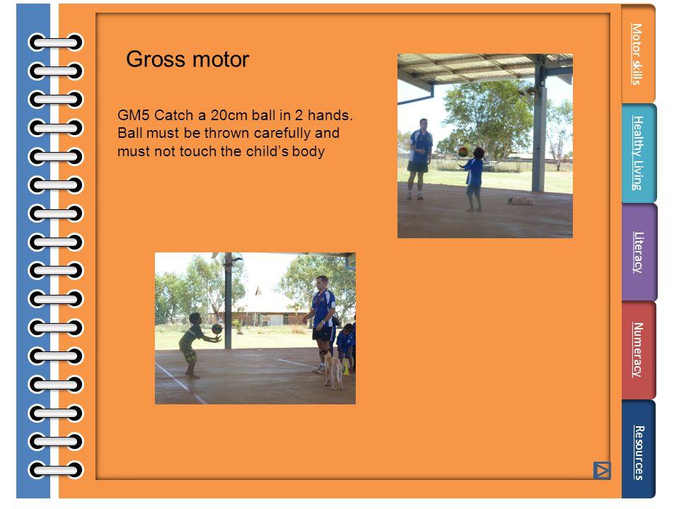 Gross motor GM5 Catch a 20cm ball in 2 hands.