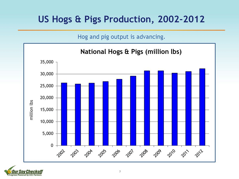 US Hogs & Pigs Production, 2002-2012 7 Hog and pig output is advancing.