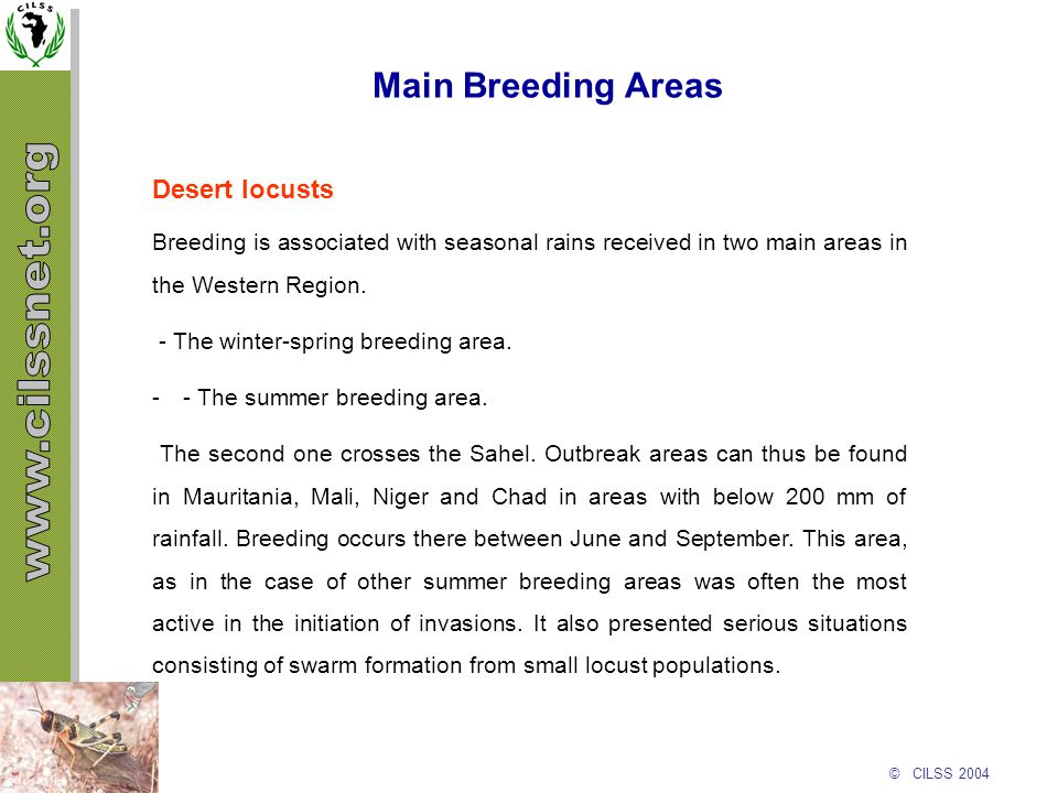 © CILSS 2004 Main Breeding Areas Desert locusts Breeding is associated with seasonal rains received in two main areas in the Western Region. - The win