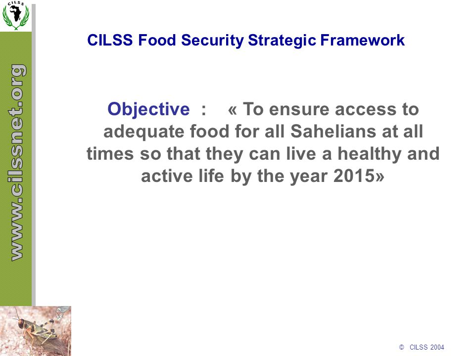 © CILSS 2004 CILSS Food Security Strategic Framework Objective : « To ensure access to adequate food for all Sahelians at all times so that they can l