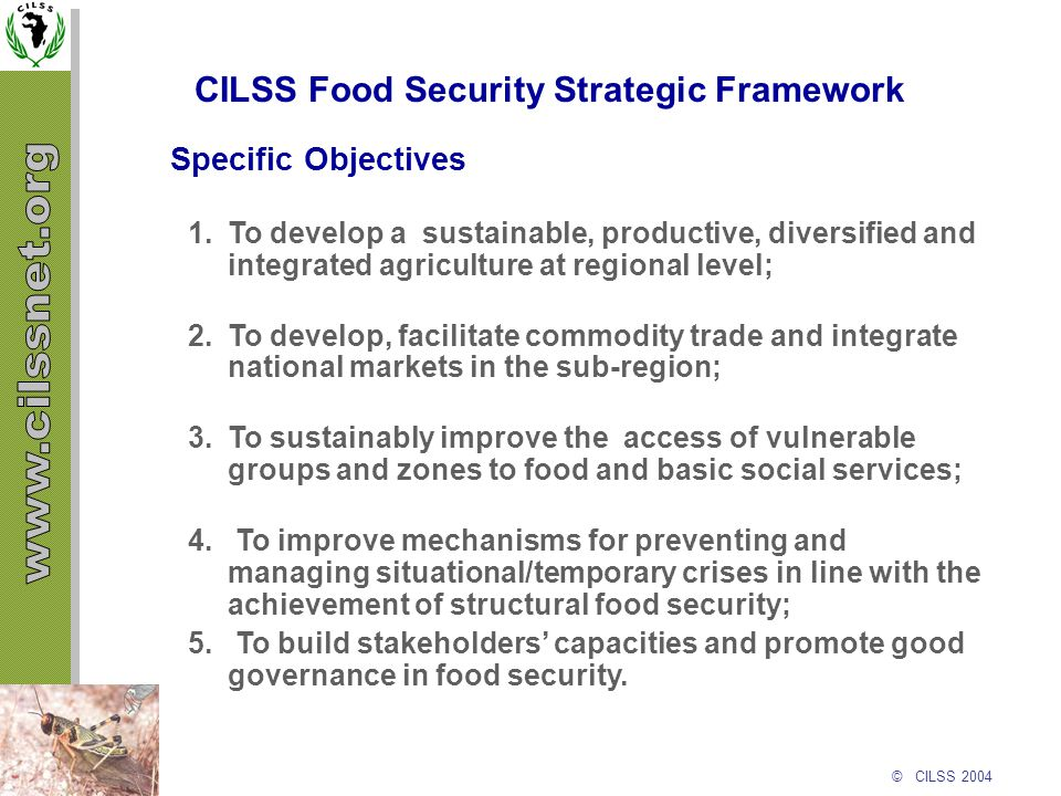 © CILSS 2004 CILSS Food Security Strategic Framework 1.To develop a sustainable, productive, diversified and integrated agriculture at regional level;