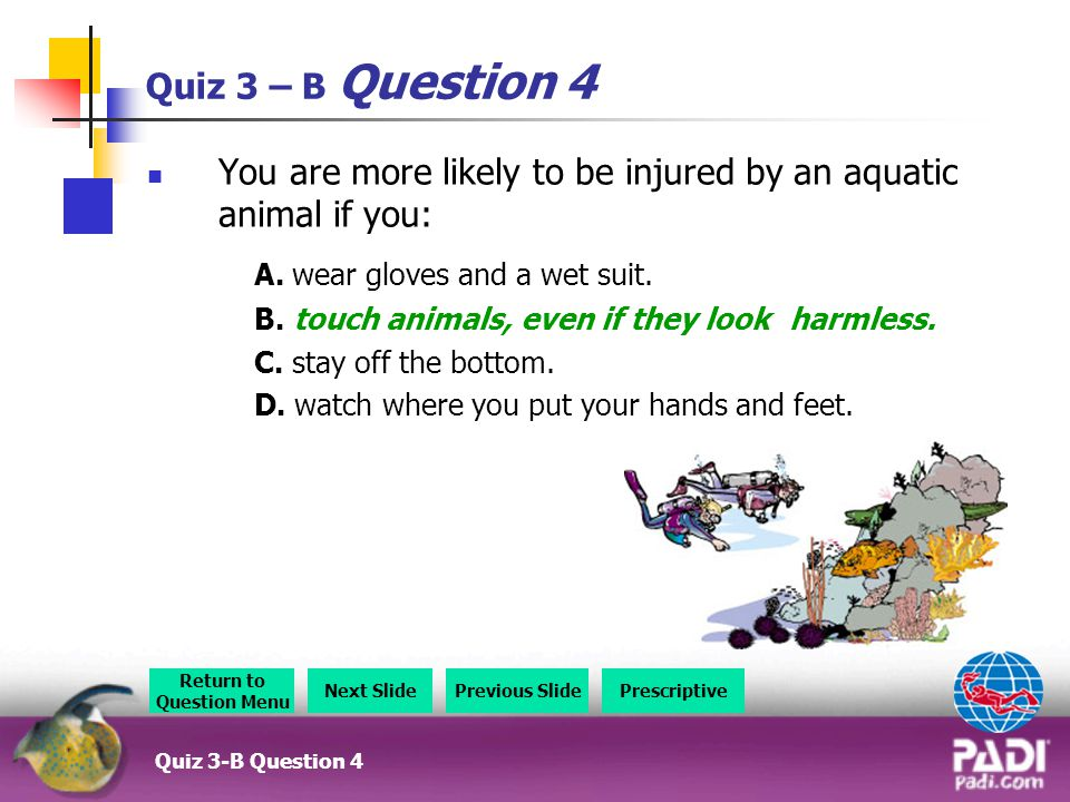 Quiz 3 – B Question 4 You are more likely to be injured by an aquatic animal if you: A.