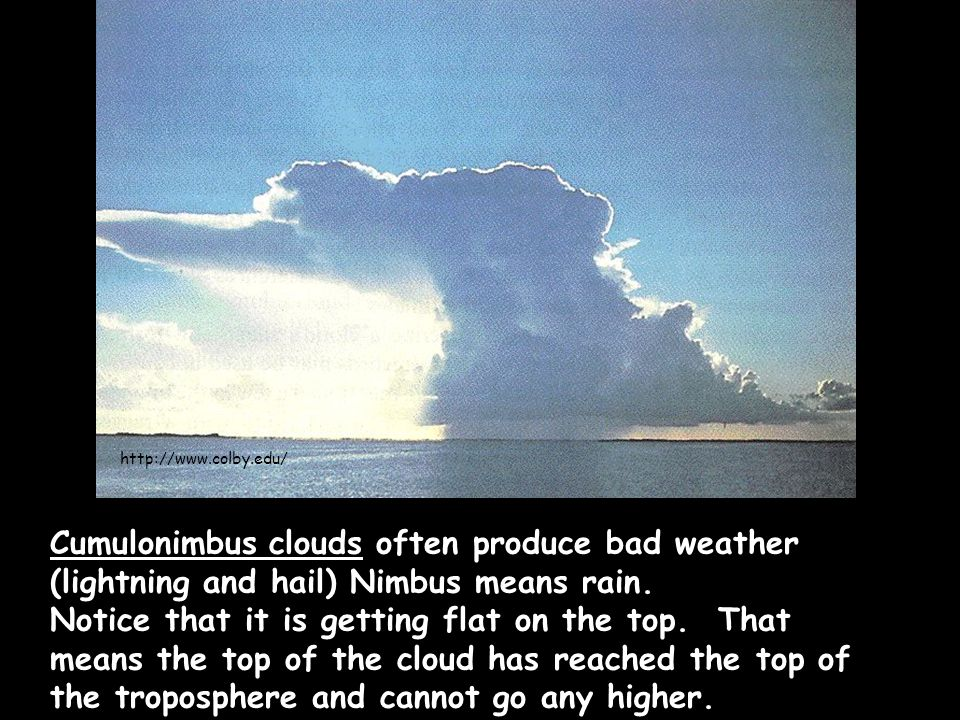 Cumulonimbus clouds often produce bad weather (lightning and hail) Nimbus means rain.