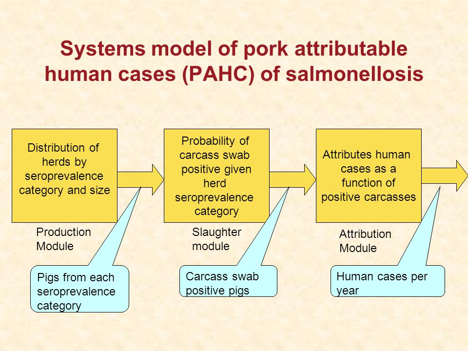 Systems model of pork attributable human cases (PAHC) of salmonellosis Distribution of herds by seroprevalence category and size Production Module Probability of carcass swab positive given herd seroprevalence category Slaughter module Attributes human cases as a function of positive carcasses Attribution Module Pigs from each seroprevalence category Human cases per year Carcass swab positive pigs