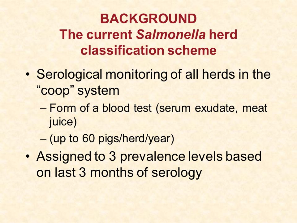 BACKGROUND The current Salmonella herd classification scheme Serological monitoring of all herds in the coop system –Form of a blood test (serum exudate, meat juice) –(up to 60 pigs/herd/year) Assigned to 3 prevalence levels based on last 3 months of serology