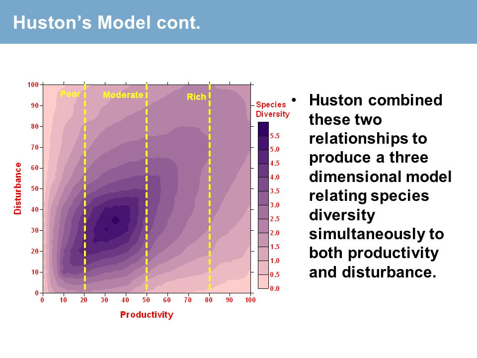 Huston's Model cont. Huston combined these two relationships to produce a three dimensional model relating species diversity simultaneously to both pr