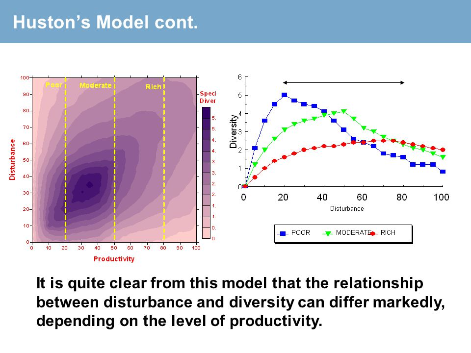 Huston's Model cont. It is quite clear from this model that the relationship between disturbance and diversity can differ markedly, depending on the l