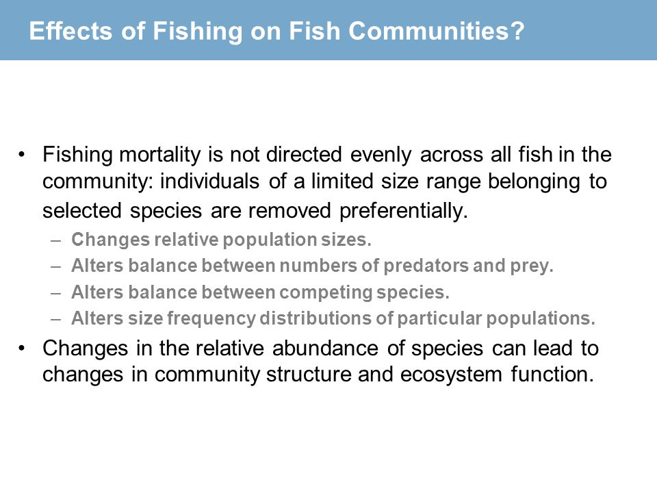 Effects of Fishing on Fish Communities? Fishing mortality is not directed evenly across all fish in the community: individuals of a limited size range