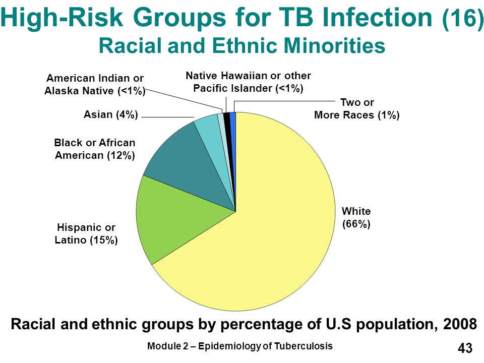 Module 2 – Epidemiology of Tuberculosis 43 High-Risk Groups for TB Infection (16) Racial and Ethnic Minorities Racial and ethnic groups by percentage