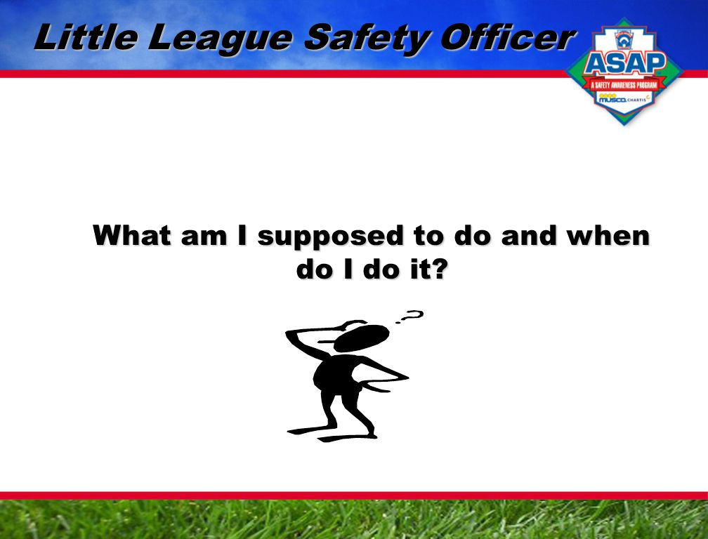 What am I supposed to do and when do I do it Little League Safety Officer