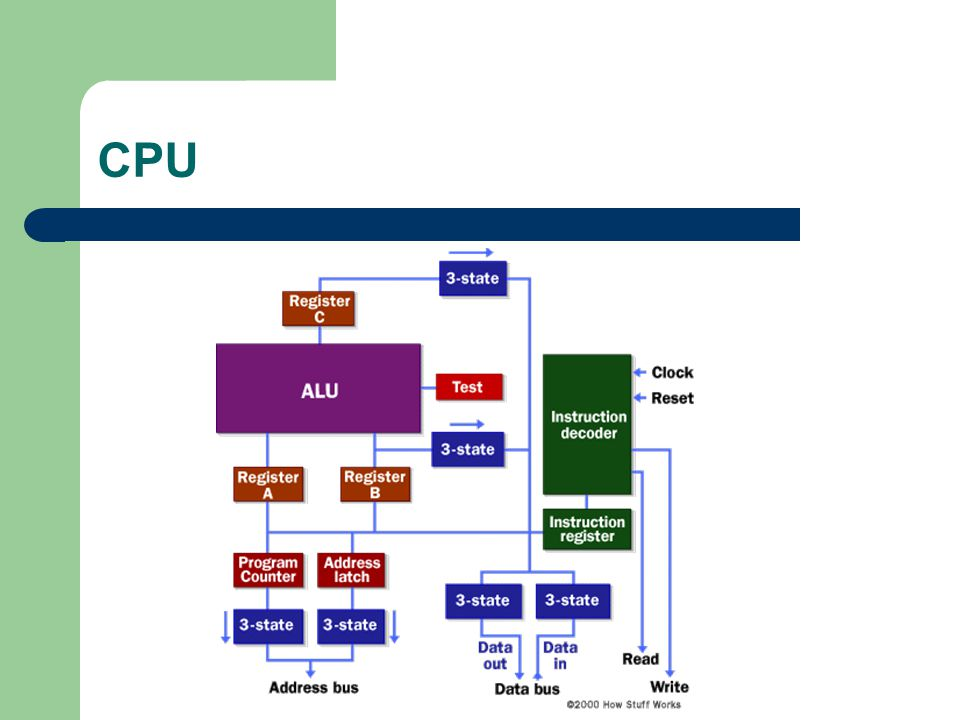 CPU  Central processing unit (CPU) - The microprocessor brain of the computer system is called the central processing unit.