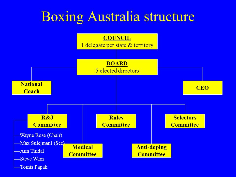 Boxing Australia structure COUNCIL 1 delegate per state & territory Anti-doping Committee Medical Committee Selectors Committee R&J Committee CEO BOARD 5 elected directors National Coach Rules Committee Wayne Rose (Chair) Max Sulejmani (Sec) Ann Tindal Tomis Papak Steve Warn