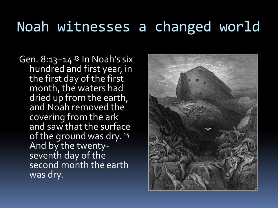 Noah witnesses a changed world Gen. 8:13–14 13 In Noah's six hundred and first year, in the first day of the first month, the waters had dried up from