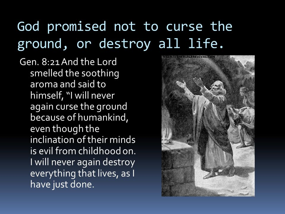 """God promised not to curse the ground, or destroy all life. Gen. 8:21 And the Lord smelled the soothing aroma and said to himself, """"I will never again"""