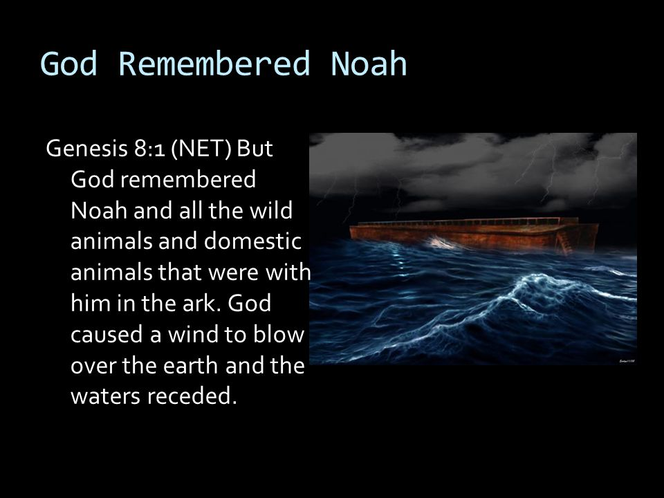 God Remembered Noah Genesis 8:1 (NET) But God remembered Noah and all the wild animals and domestic animals that were with him in the ark. God caused