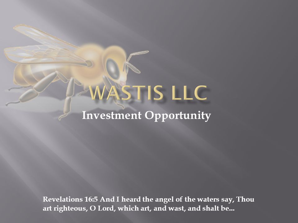  WASTIS LLC is an innovative company with the mission to provide real estate properties to renters and buyers.