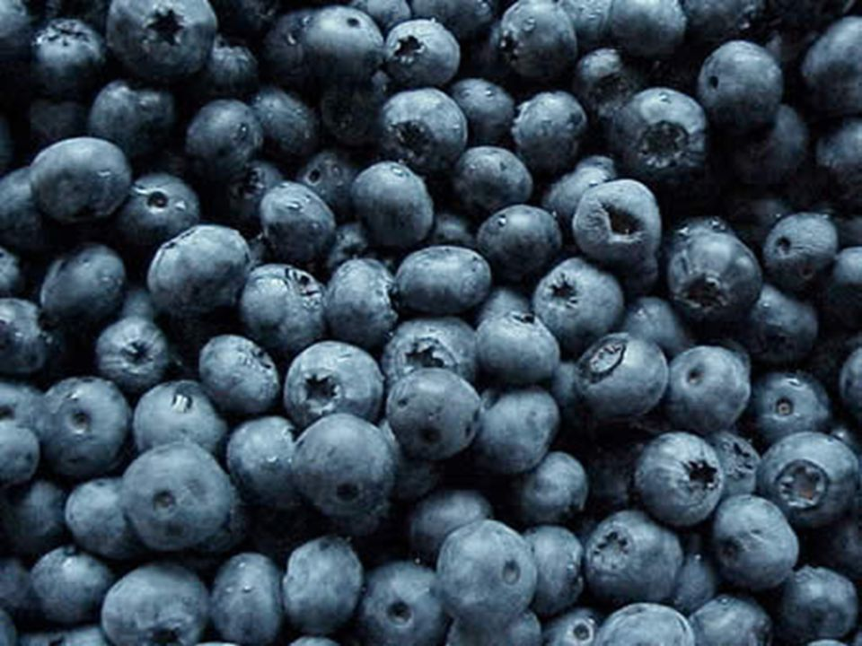 Antioxidants Antioxidants also bind to free radicals, making them harmless to the body. Antioxidants can be found in colorful fruits like blueberries
