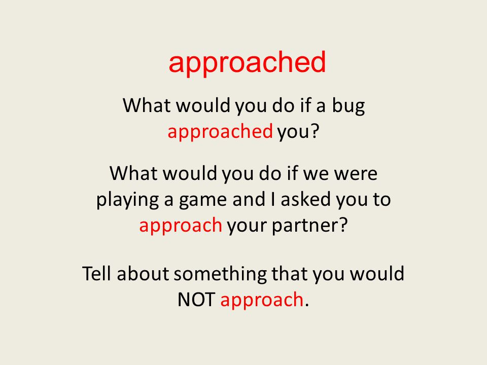 approached What would you do if a bug approached you.
