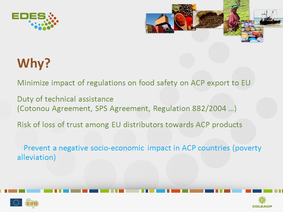 Support sample: Risk asessment Actors Supervisory Authority Ministry/ Agency Independant scientific assessor Roles Food safety policy Implementation of assessment Risk assessment Advice to Authorities Reinforcement objectives Definition of Food safety policy with stakeholders Management of assessment activities - Identify & assess risks - Prepare reporting to stakeholders -Opinions on regulation - Define the result indicators Support Training Facilitation Training Technical assistance Training Coaching Training