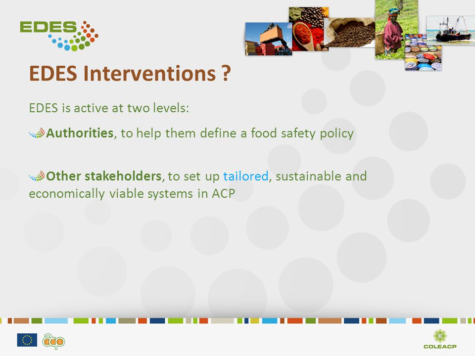 Food safety system : stakeholders Any actor/operator with a responsibility in the process Public Services: supervision and management Private Operators (Prof.