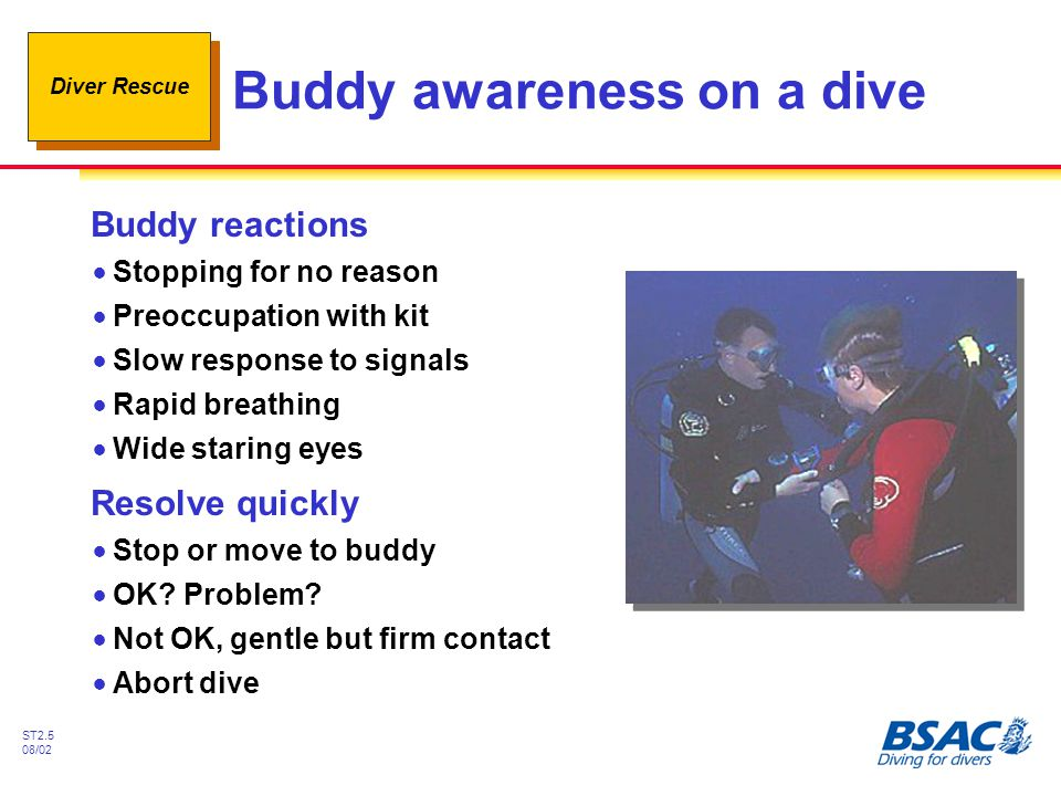 Diver Rescue ST2.5 08/02 Buddy awareness on a dive Buddy reactions !Stopping for no reason !Preoccupation with kit !Slow response to signals !Rapid br