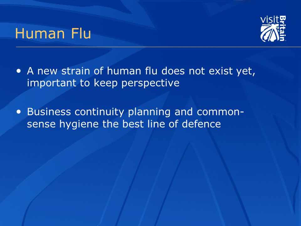 Human Flu A new strain of human flu does not exist yet, important to keep perspective Business continuity planning and common- sense hygiene the best line of defence