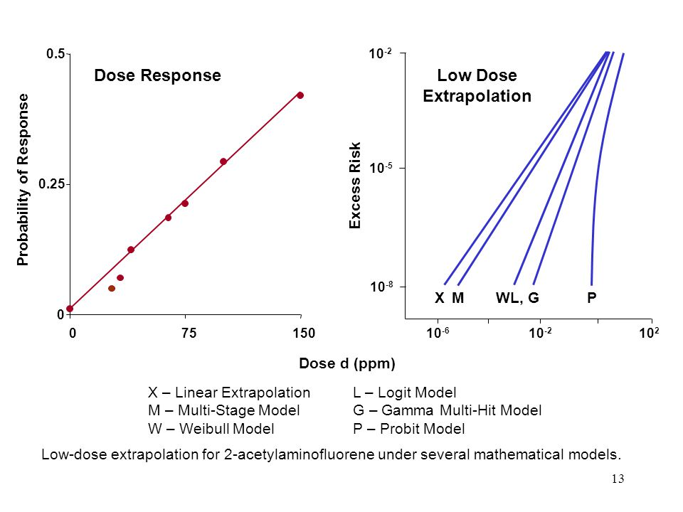 13 0 0.25 0.5 075150 Probability of Response Dose Response X – Linear ExtrapolationL – Logit Model M – Multi-Stage ModelG – Gamma Multi-Hit Model W – Weibull ModelP – Probit Model Low-dose extrapolation for 2-acetylaminofluorene under several mathematical models.