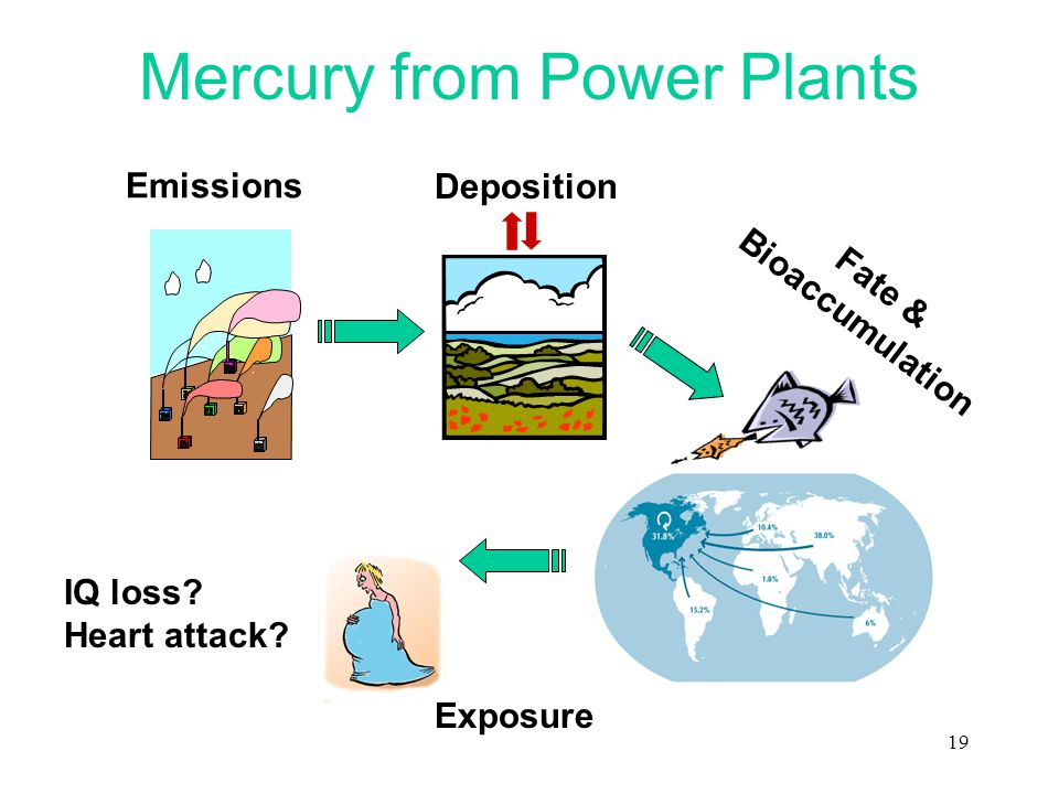 19 Mercury from Power Plants IQ loss? Heart attack? Deposition Emissions Fate & Bioaccumulation Exposure