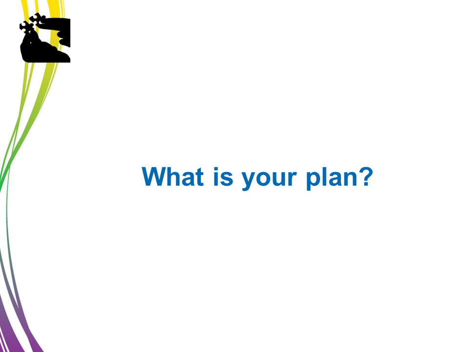 What is your plan?