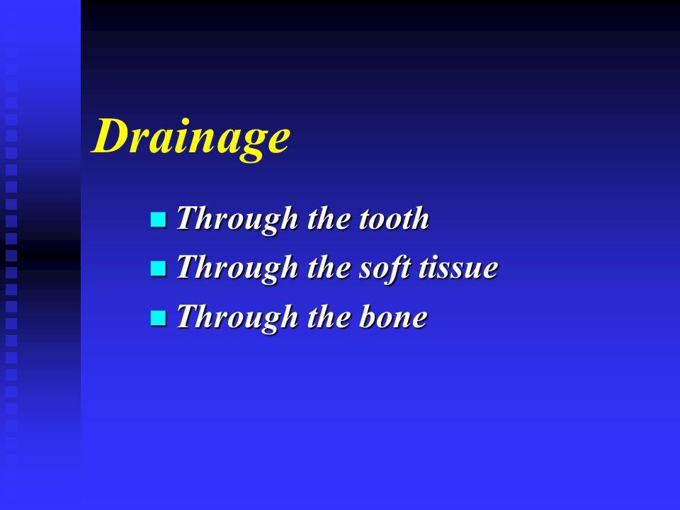 Drainage n Through the tooth n Through the soft tissue n Through the bone
