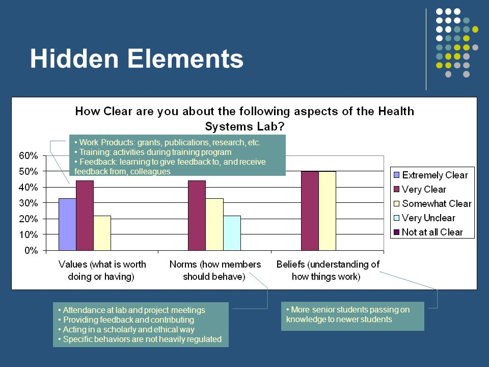 Hidden Elements Values were the most clear hidden elements Values mentioned by lab responses can be translated across research institutes Academic works, such as publications or presentations, for instance, are universally valued in the research world The lab sees those who have been successful in terms of our values as heroes Norms were the least clear hidden elements Where independent thought is valued, individual behavior may be less regulated