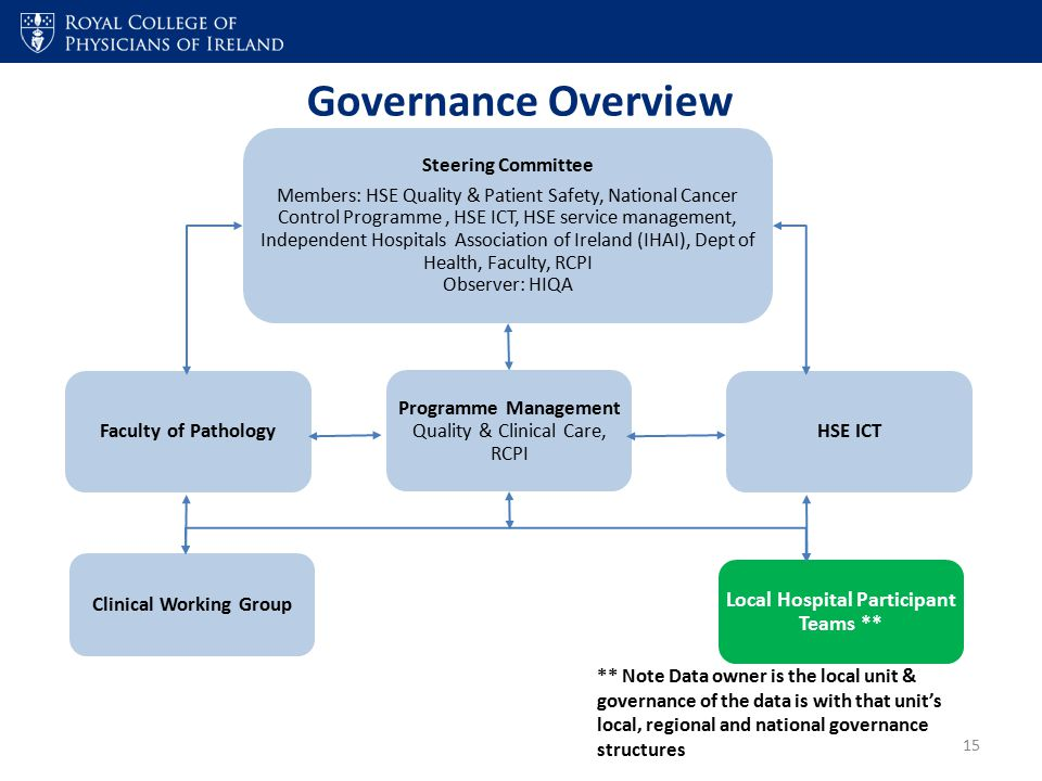 Governance Overview Steering Committee Members: HSE Quality & Patient Safety, National Cancer Control Programme, HSE ICT, HSE service management, Inde
