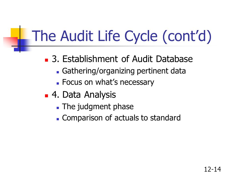12-14 The Audit Life Cycle (cont'd) 3. Establishment of Audit Database Gathering/organizing pertinent data Focus on what's necessary 4. Data Analysis