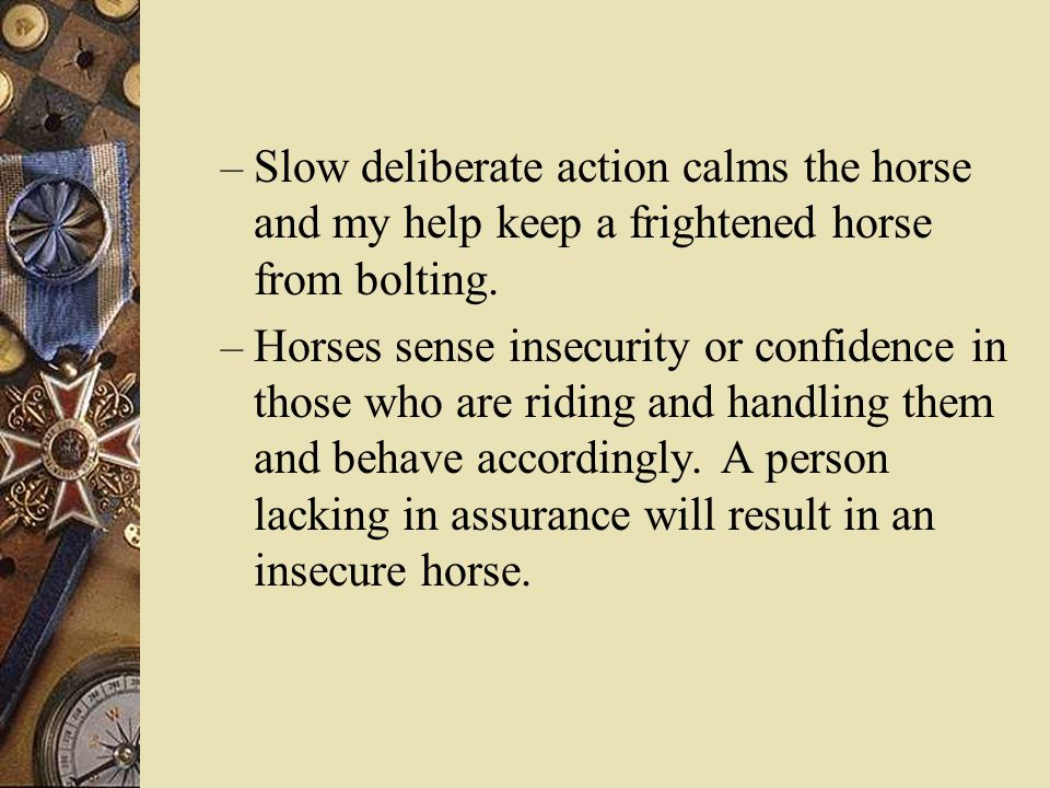 – Slow deliberate action calms the horse and my help keep a frightened horse from bolting.