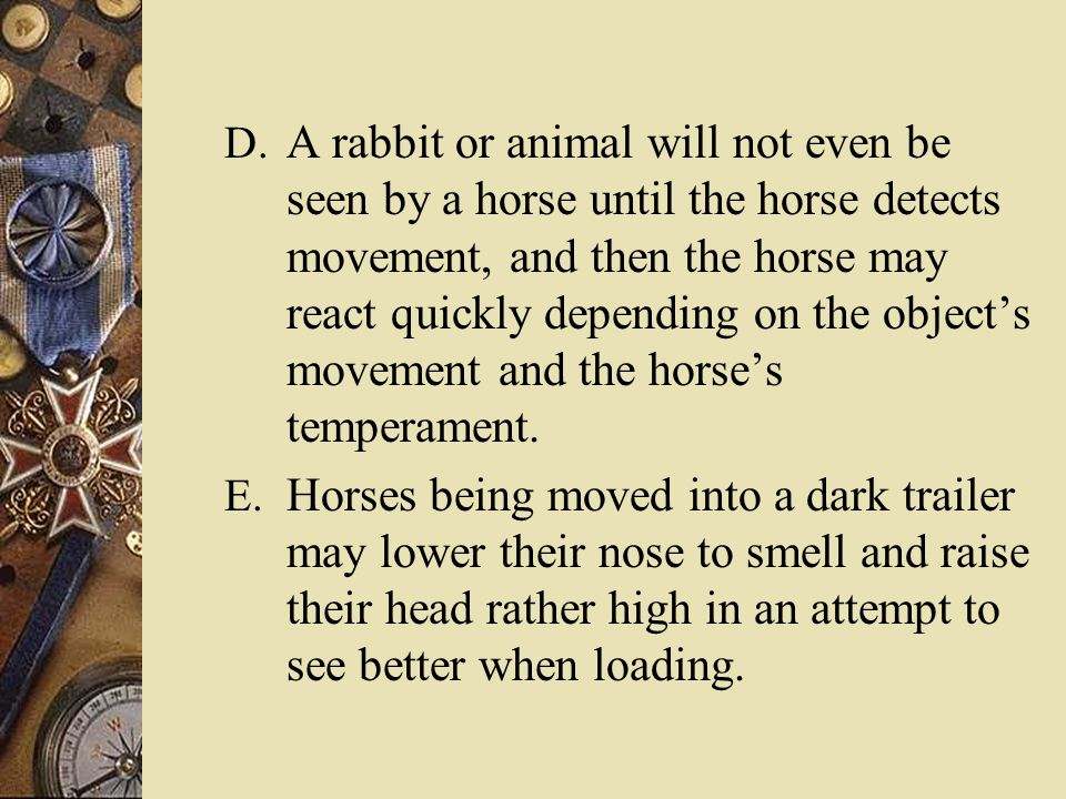 Safely Managing Horses  Reassure the horse – By anticipating the possible behavior prior to it actually taking place, the rider or handler may take appropriate action to direct the horse's behavior.