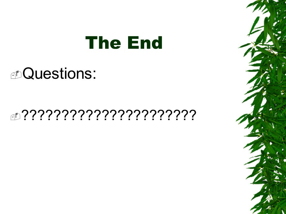 The End  Questions: 
