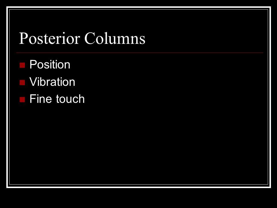 Posterior Columns Position Vibration Fine touch
